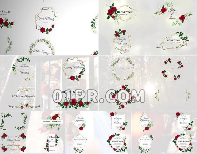 Pr素材花卉浪漫标题