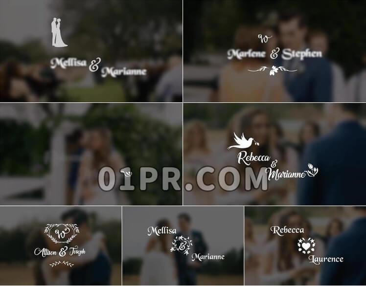 Pr素材婚礼标题