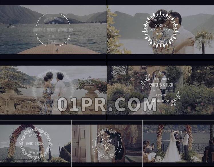 Pr素材时尚婚礼标题