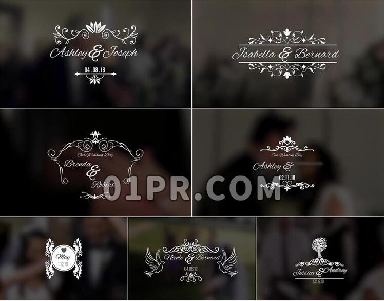 Pr模板婚礼标题
