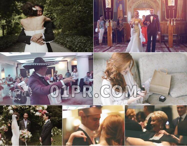 Pr模板婚礼DAY