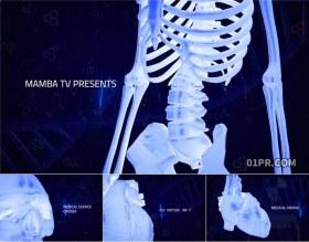 FCPX片头插件 医学科技人体