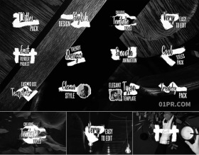 FCPX字幕插件 12组优雅笔刷标题动画文字
