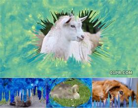 达芬奇模板转场 水彩手绘美术艺术动画过渡效果 DR素材