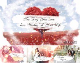 达芬奇婚礼模板 优雅水墨浪漫恋爱情人节15张 DR电子相册模板