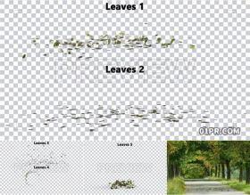 6组动画绿叶风吹动落叶飘动叶子 视频素材PR/AE/FCPX