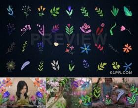 动画花朵花卉元素透明背景 34组4K视频素材PR/AE/FCPX